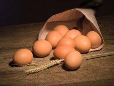 Wartości odżywcze jajek