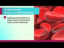 Wpływ kwasów omega-3 na układ krwionośny