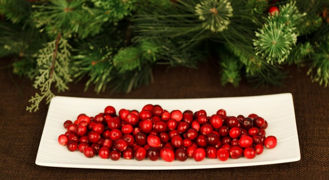 httppixabay-comenchristmas-background-berry-21949_49eb.jpg
