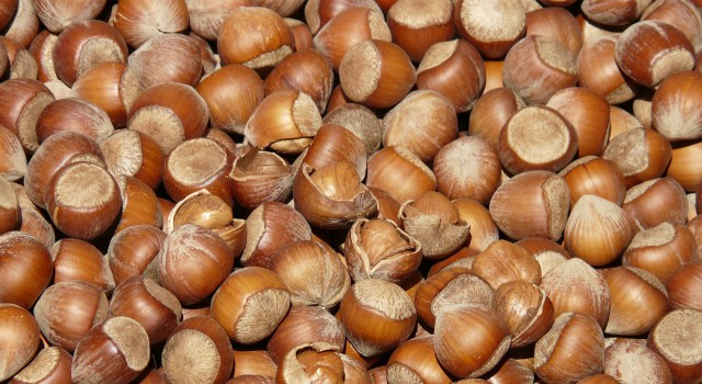 httppixabay-comenhazelnuts-brown-nuts-open-shells-73940_5225.jpg