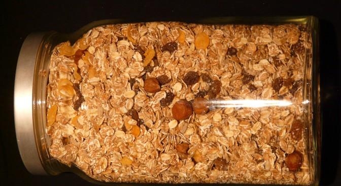 httppixabay-comenmuesli-oatmeal-cereals-raisins-5981_6fad.jpg