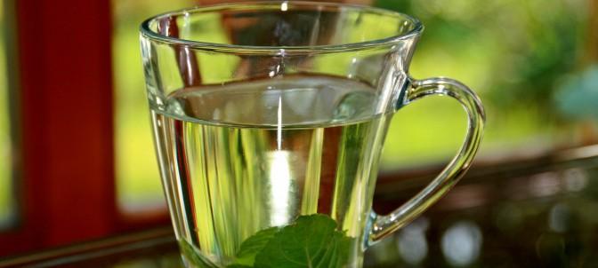 peppermint-tea-352334-1280_edaa.jpg