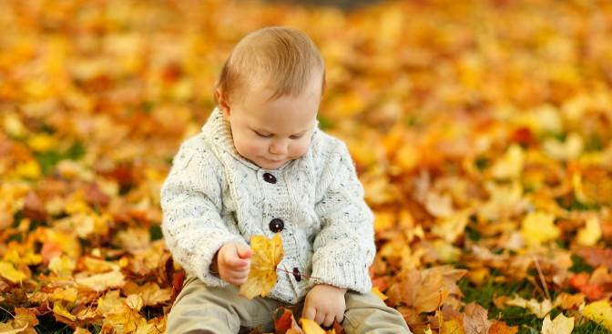 autumn-165184-1280_760f.jpg