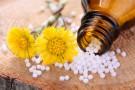 Karaluch, muchomor pospolity...sprawdź, co skrywają w sobie leki homeopatyczne!