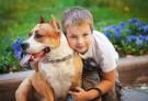 Pies najlepszym lekarzem człowieka?