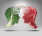 Białka roślinne a zwierzęce