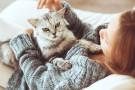 Wpływ zwierząt na zdrowie człowieka